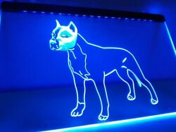 American Staffordshire Terrier Dog LED Neon Light Sign Pet House Wall Art Décor