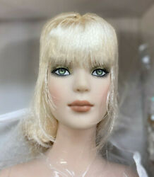 2011 16 Tonner Dazzling Tyler Wigged Doll Nrfb Stunning Gown Long Wigged Hair