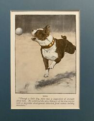 """VINTAGE BOSTON TERRIER BOOKPLATE PRINT MATTED FOR 8"""" X 10"""" FRAMING"""