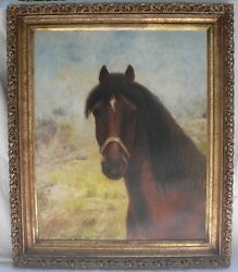 Gorgeous 19th Century American Horse Painting O/c Unsigned