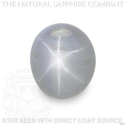 Natural Untreated Blue Star Sapphire 7.62ct. S2220