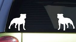 2 Pitbull uncropped *I415* 6 inch White Stickers pit bull american bully