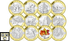 2013special-edition Set Of 12 Gold-plated O'canada 10pure Silver.9999fineooak