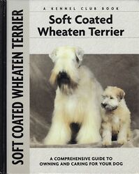 SOFT COATED WHEATEN TERRIER history breed standard training showing