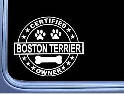 Certified Boston Terrier L282 Dog Sticker 6