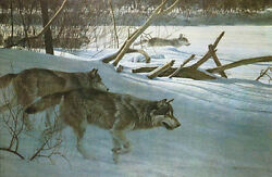 Wolfpack In Moonlight By Robert Bateman Limited Edition Canvas