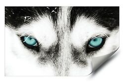 Green Eyed Husky Dog Grey Wolf HD Premium Vinyl Removable Wall Art Poster Decal
