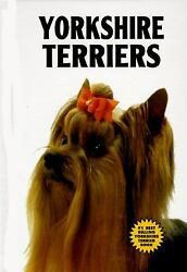 Yorkshire Terriers by Kerry Donnelly
