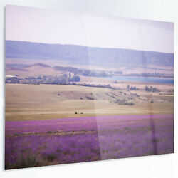 Design Art 'Calm Sunset over Lavender Field' Photographic Print on Metal