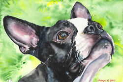 'Boston Terrier' by George Dyachenko Painting Print on Wrapped Canvas