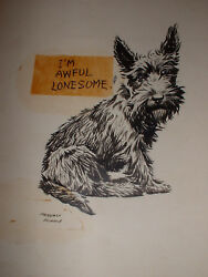 Signed Advertising Illustration Drawing by Morgan Dennis Scottish Terrier Dog #3