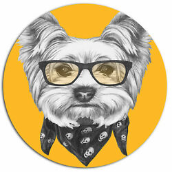 Design Art 'Funny Terrier Dog with Glasses' Graphic Art Print on Metal