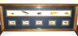 Fly Fish Lures Shadow Box With Corresponding Us Stamps Unique Collectible Art