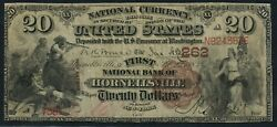 Fr493 262 20 1882 Brown Back Hornellsville Ny F-vf 2 Known Very Rare Wlm9516