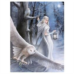 Midnight Messenger Canvas Art Print by Anne Stokes Fantasy Wall Home Decor $19.49