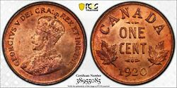 Canada 1 Cent Coin Collection. Pcgs Graded. Lot Of 7 Certified Small Cent Coins