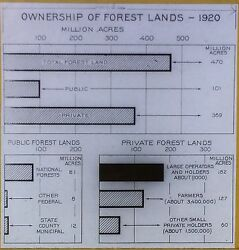 1920 Forest Land Ownership Magic Lantern Glass Slide Us Forest Service Chart