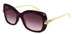 Cartier Women Sunglasses CT0215S-003-PANTHERE Havana Gold   Burgundy Gradient