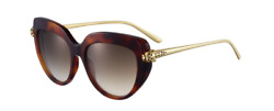 Cartier Women Sunglasses CT0214S-002-PANTHERE Havana  Brown Gradient Mirrored