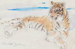 Marshall Goodman, Tiger, Double Sided Watercolor On Paper