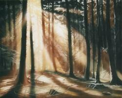 Susan Jameson Autumn Forest Aquatint Etching Signed And Dated In Pencil