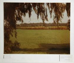 Theodore Cohen The Tender Grass Springith Out Of The Earth Photograph