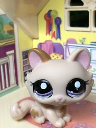 Littlest Pet Shop Tan Crouching Kitty Cat with Purple Eyes #1444 Authentic.