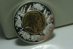 1936 Buffalo Nickel Gold-plated Inlay Currency Collection 2001 Proof