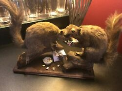 Man Cave Pbr Drunks Oddity Two Drunked Up Beer Drinking Squirrels - Pabst Cans
