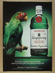 1988 Tanqueray Gin Green Macaw Parrot And Bottle Photo Vintage Print Ad
