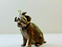 Bronze Austrian Cold Painted Dog With A Bandage On His Head Pin Cushion