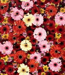 Damien Hirst- Beautiful Inside My Head Forever- Wallpaper