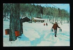 1970s Maple Sugar Time Vermont New Hampshire New England Sap Buckets Snow Pc