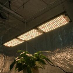 320w Samsung Lm301h With Cree And Lg Quantum Board Led Grow Light 600w Hps