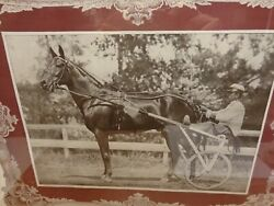 Dan Patch Pacer Horse 155 Original Vintage Rare M.w.savage In On Bottom Left