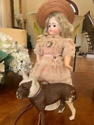 Antique French Pull-toy Glass-eyed Dog With Leather Collar - Mint 1800and039s