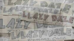 Lazy Daze Vintage Travel Trailer Motorhome Reproduction Decal 1960and039s 17 And 25