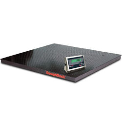 Rice Lake 168146 Roughdeck Floor Scale W/ 482 Indicator 5000 Lb X 1 Lb Ntep