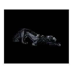 Genuine Lalique Zeila Panther Black Crystal 1167100 Free Delivery