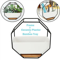 Plant Flower Pots Hanging Holder White Ceramic Wall Planters Art Home DecorTray