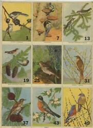 5 Sheets Of Uncut Trading Cards Of North American Birds