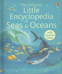 The Usborne Little Encyclopedia Of Seas And Oceans Inked By Ben Denne