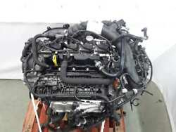 M9bd Complete Engine Ford Focus Limited Edition Sport Year 2014 1078714