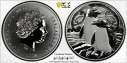 2020 New Zealand Chatham Crested Penguin Pcgs Gold Shield Ms69 With Nfc Tech