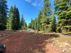 California Land For Sale - .92 Acres With Nice Trees And Level Lot - Modoc County