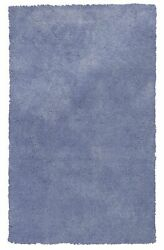 10and039x13and039 Purple Indoor Shag Rug