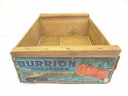 Vintage Wood Wooden Burrion Tomatoes Mexico Advertising Shipping Box Fruit Crate