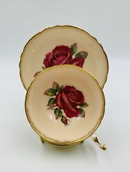 Vintage Paragon R.johnson Pink Round-shape Teacup And Saucer Red Cabbage Rose