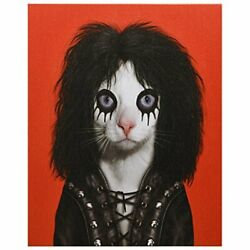 Empire Art Direct Pets Shock Rock Graphic Wrapped Canvas Cat Wall Art, 20 X ...