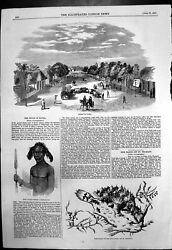 Antique Old Print Street Natal Zulu Youth Fish Gulf Weed Off St Thomass 1857